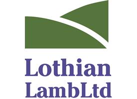 lothian-lamb